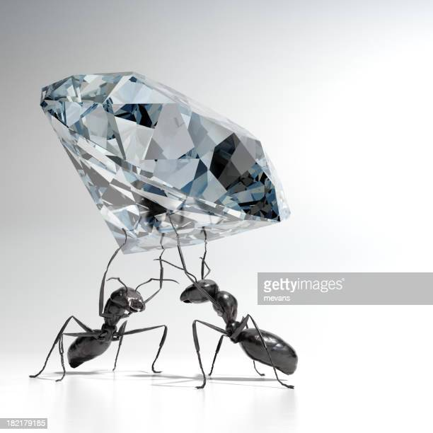 ants carrying a diamond - ants stock pictures, royalty-free photos & images