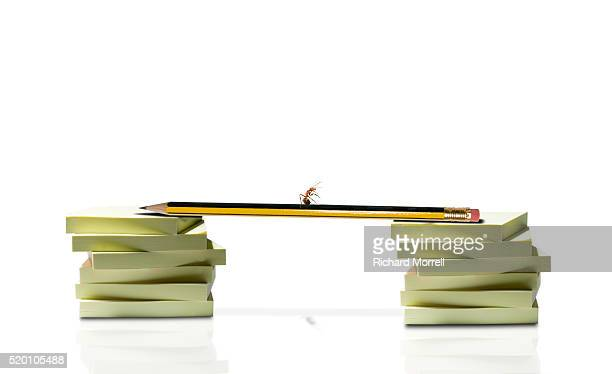 Ants Walking Across Stacks of Sticky Notepaper on Pencil