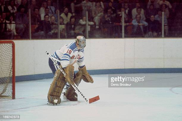 Antti Leppanen of team Finland guards the goal against team Canada during a Canada Cup game held at the Ottawa Civic Centre on September 2 1976 in...