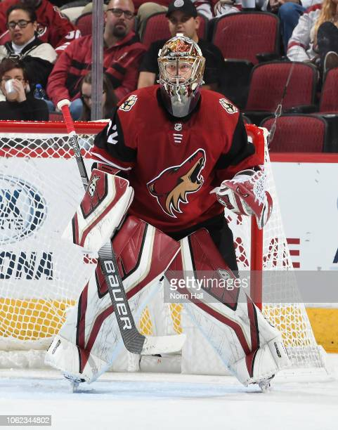 Antti Raanta of the Arizona Coyotes gets ready to make a save against the Ottawa Senators at Gila River Arena on October 30 2018 in Glendale Arizona