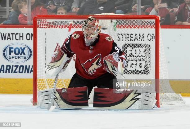 Antti Raanta of the Arizona Coyotes gets ready to make a save against the Edmonton Oilers at Gila River Arena on January 12 2018 in Glendale Arizona