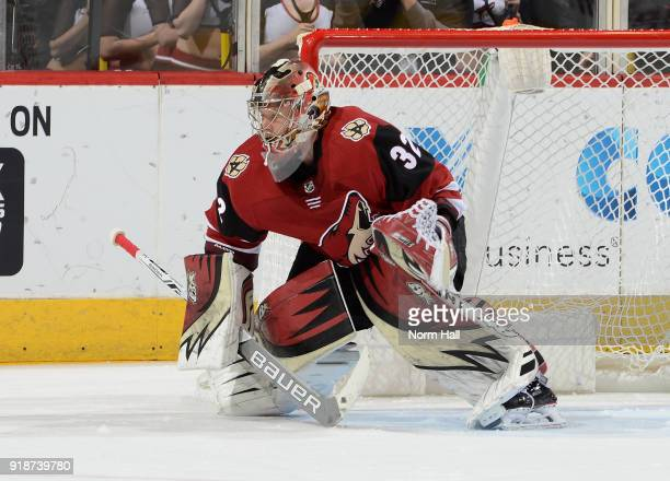 Antti Raanta of the Arizona Coyotes gets ready to make a save against the Chicago Blackhawks at Gila River Arena on February 12 2018 in Glendale...