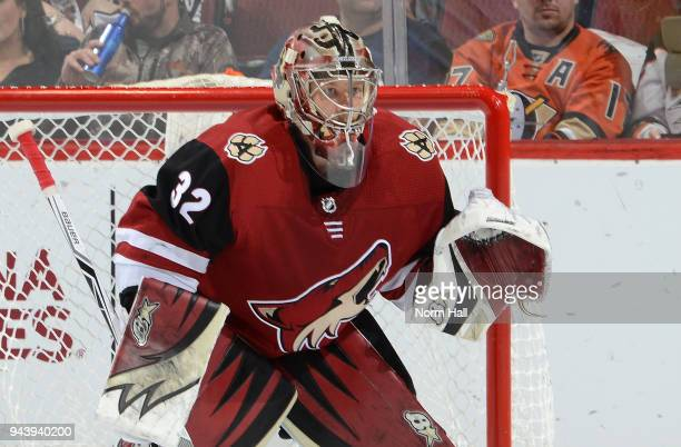 Antti Raanta of the Arizona Coyotes gets ready to make a save against the Anaheim Ducks at Gila River Arena on April 7 2018 in Glendale Arizona