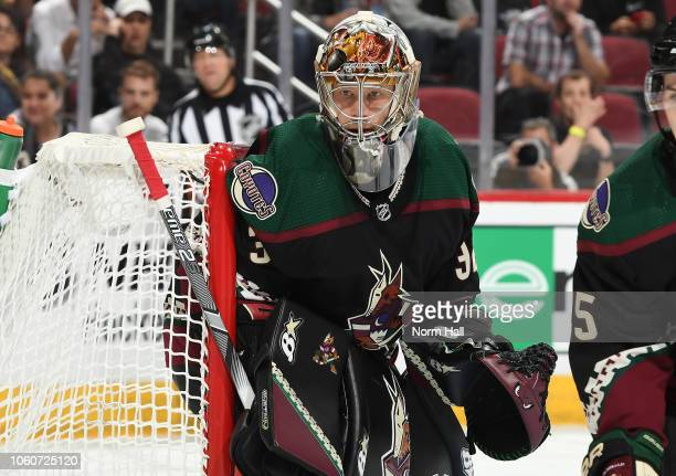 Antti Raanta of the Arizona Coyotes gets ready to make a save during the third period against the Tampa Bay Lightning at Gila River Arena on October...