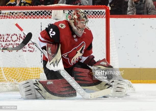 Antti Raanta of the Arizona Coyotes makes a glove save against the Calgary Flames at Gila River Arena on February 22 2018 in Glendale Arizona