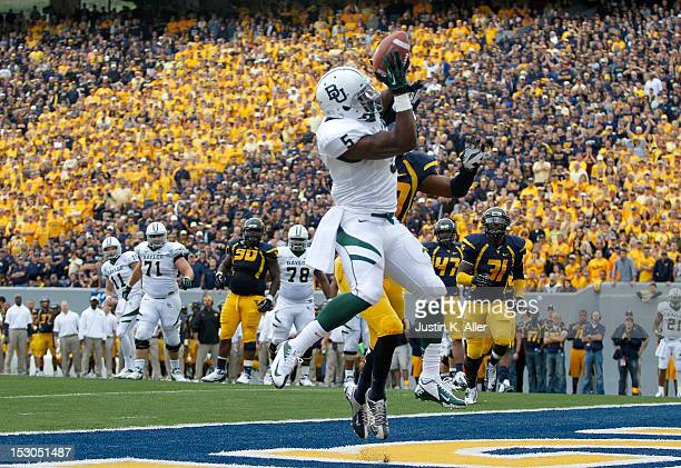 Antwan Goodley of the Baylor Bears catches a seven yard touchdown pass in the fourth quarter against the West Virginia Mountaineers during the game...