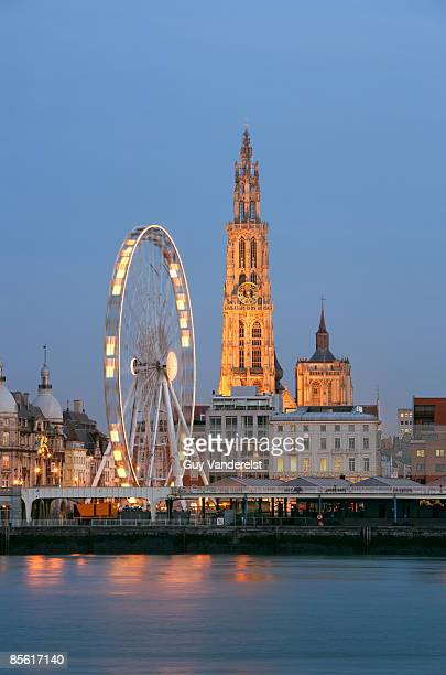 antwerp cathedral with ferris wheel - scheldt river stock pictures, royalty-free photos & images