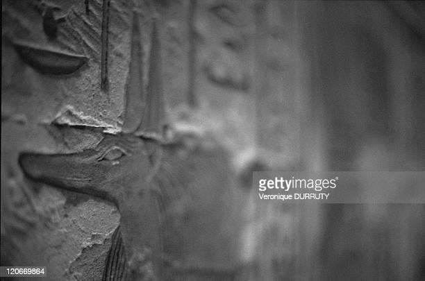 Anubis Medinat Habu Thebes Egypt