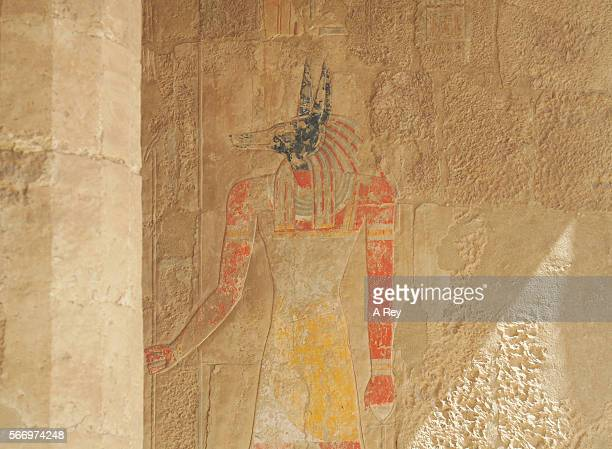 anubis - egyptian god stock pictures, royalty-free photos & images