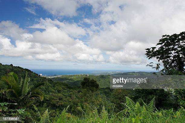yunque - paisajes de puerto rico fotografías e imágenes de stock