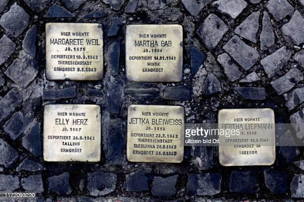 Anwohner reinigen Stolpersteine in Friedenau Stierstraße - die Steine wurden am Ostersonntag 2013 beschmiert