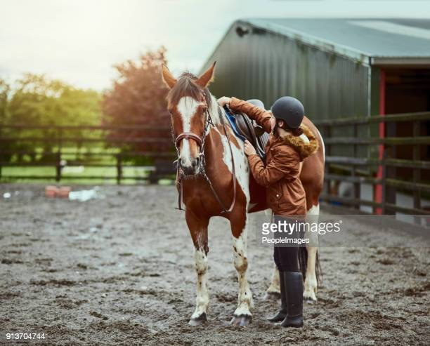 any day is good day for a ride - equestrian event stock pictures, royalty-free photos & images