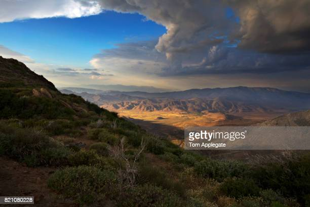 anza borrego desert state park - anza borrego desert state park stock pictures, royalty-free photos & images