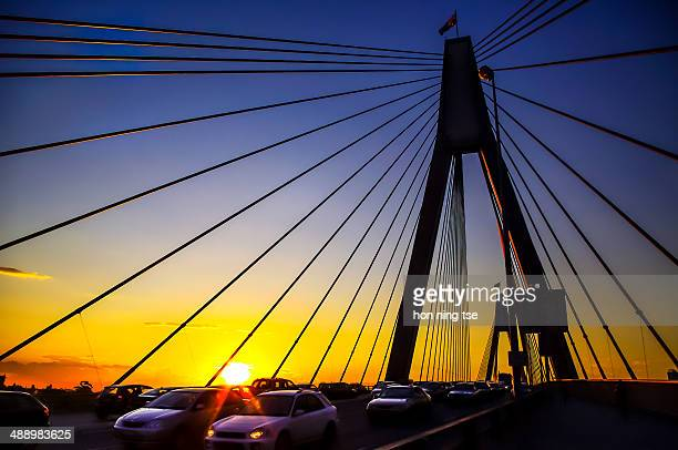 Anzac Bridge, a bridge located at Sydney, hanging by lots of cables.