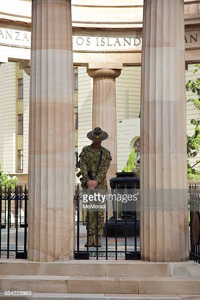anzac - anzac stock pictures, royalty-free photos & images