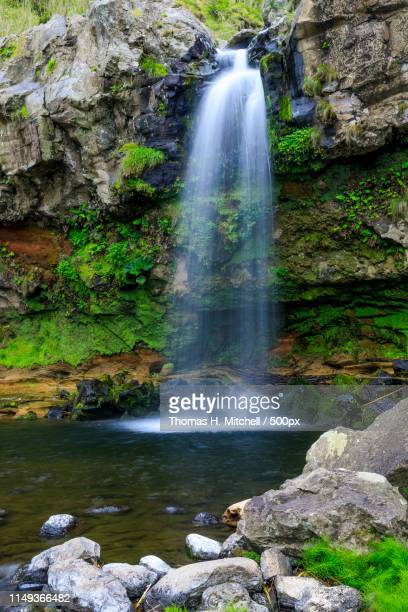 açores-são miguel-miradoura da rocha waterfall - brook mitchell stock pictures, royalty-free photos & images