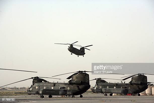 Apache helicopters of British Army engineers from 4th Regiment Army Air Corps 664 Squadron sit on an airfield on June 25 2008 at their base at the...