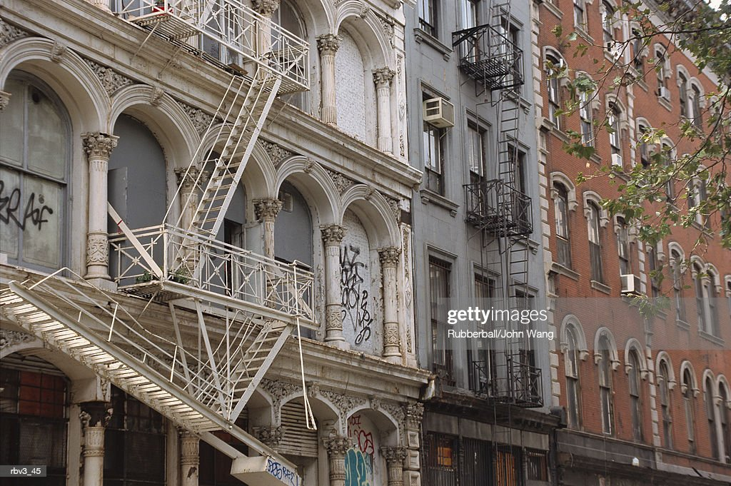 apartment buildings rise showing their glass windows as fire escapes go from one to another and tree branches reach for them : Foto de stock