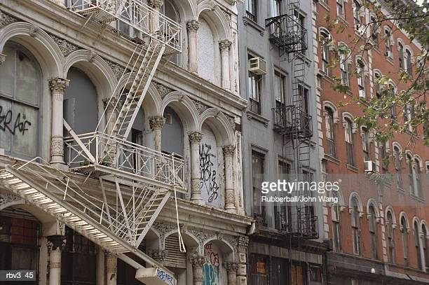 apartment buildings rise showing their glass windows as fire escapes go from one to another and tree branches reach for them