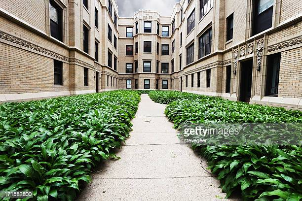 Apartment Buildings with Hostas in Rogers Park, Chicago