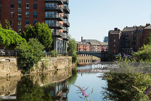 apartments along river aire, leeds - leeds stock pictures, royalty-free photos & images