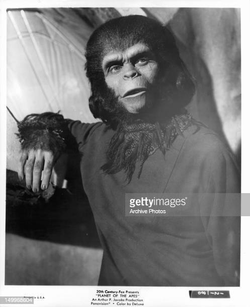 Ape in a scene from the film 'Planet Of The Apes' 1968