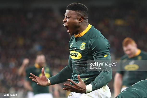 Aphid Dyantyi of South Africa celebrates his try during The Rugby Championship match between the New Zealand All Blacks and the South Africa...
