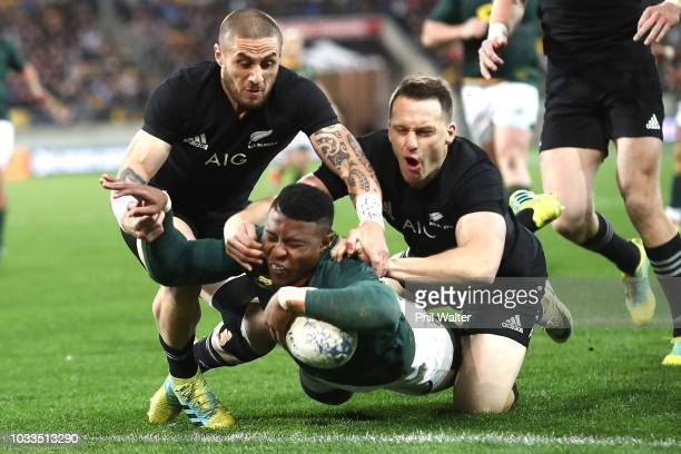 Aphid Dyantyi of South Africa scores a try during The Rugby Championship match between the New Zealand All Blacks and the South Africa Springboks at...