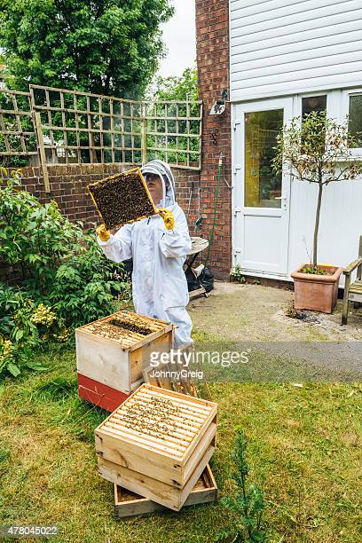 Apiarist inspecting her urban beehive