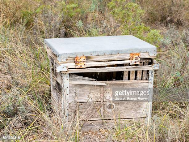 Apiary of bees of wood abandoned and broken in the field. Valencia, Spain.