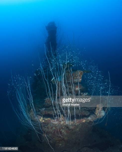 uss apogon submarine sunk in bikini atoll, marshall islands, from operation crossroads - restos de un accidente fotografías e imágenes de stock