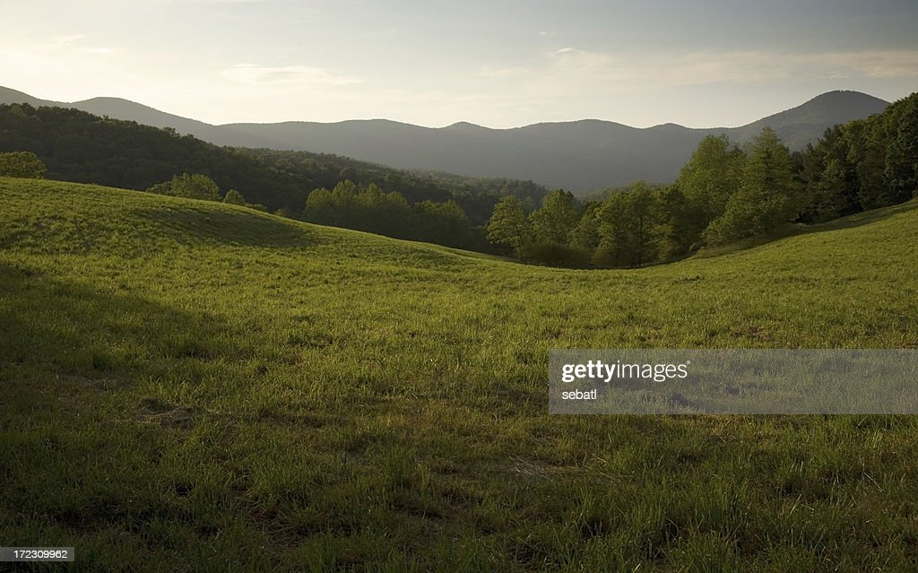 Appalachian Field : Stock Photo