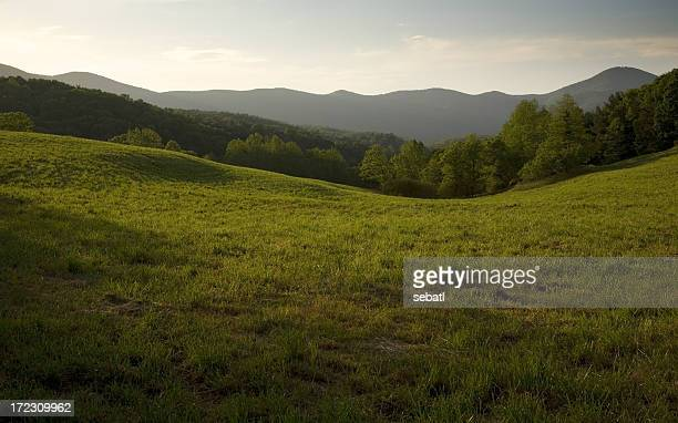 Appalachian Field