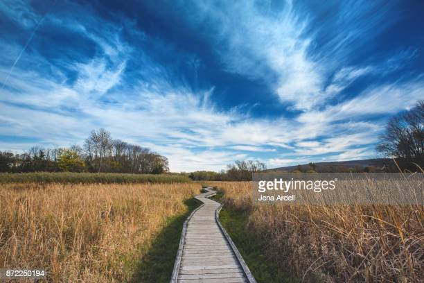 Appalachian Trail Boardwalk