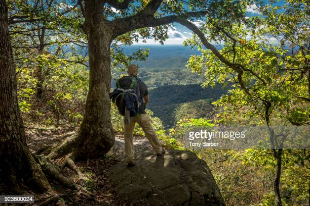 appalachian trail vista - appalachian trail stock pictures, royalty-free photos & images