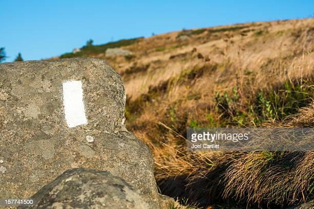 アパラチアントレイルホワイトのストライプで roan 山 - トレイル表示 ストックフォトと画像
