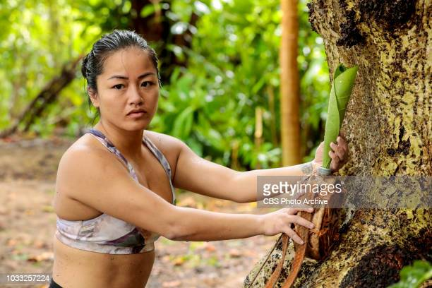 Appearances Are Deceiving Bi Nguyen competes on SURVIVOR when the Emmy Awardwinning series returns for its 37th season themed David vs Goliath with a...