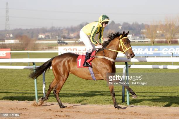 Appellez Baileys ridden by Liam Keniry goes to post at Southwell Racecourse