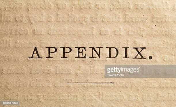 appendix page - appendix stock pictures, royalty-free photos & images