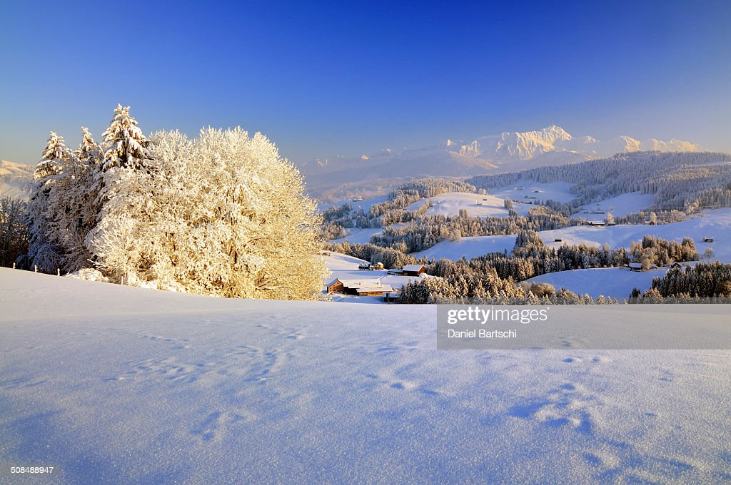 Appenzeller Winter Landscape In Evening Light With View On