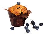 fresh yummy blueberry muffin muffin isolated