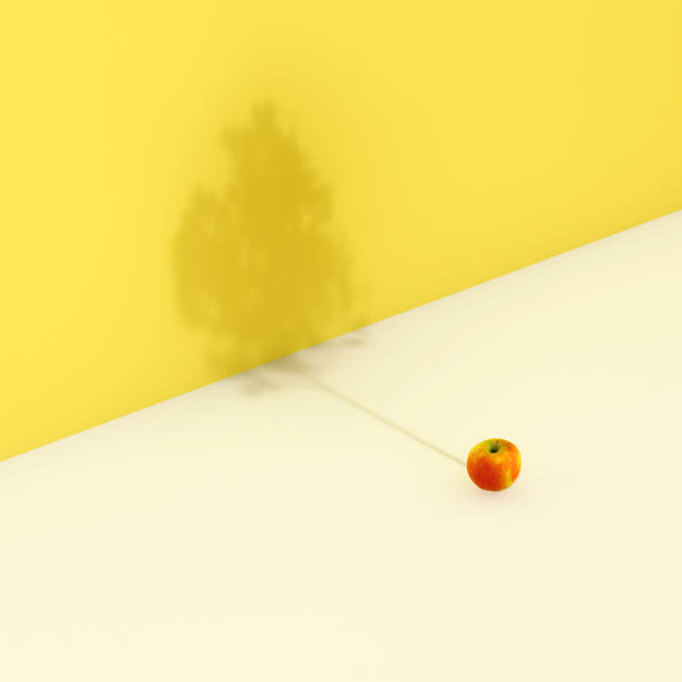apple against shadow of tree on yellow wall