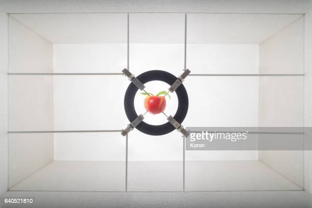 apple analyzed in a laboratory - needle plant part stock photos and pictures