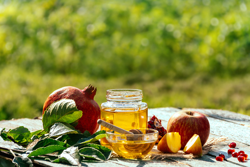 Apple and honey and pomegranate, traditional food of jewish New Year - Rosh Hashana. 1264525249