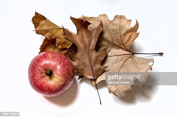 Apple and leaf