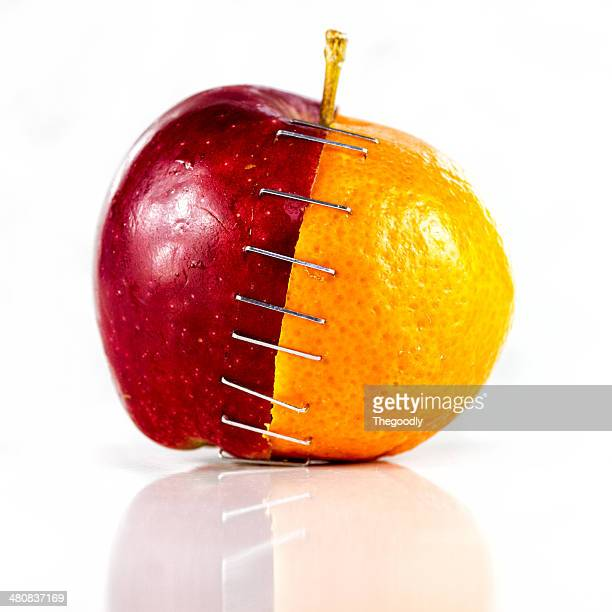 Apple and orange stapled together