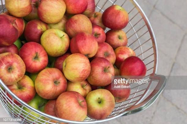 apple at the market - apple event stock photos and pictures
