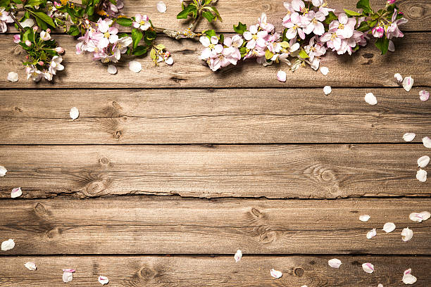 Beautiful Floral Frame With Lilies Of The Valley Apple Blossoms On Wooden Surface