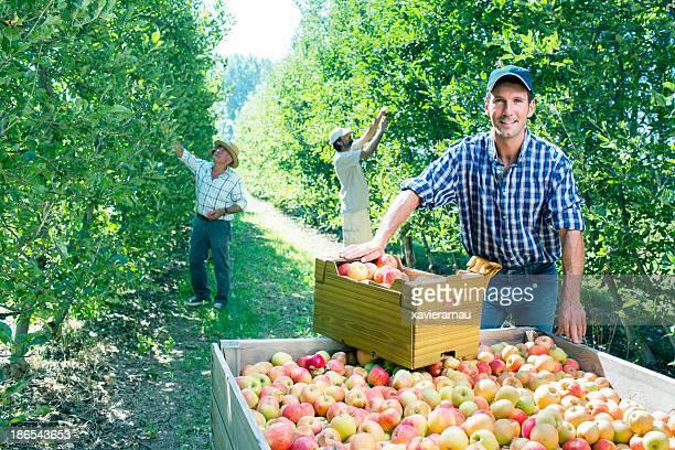 Apple negócios equipa