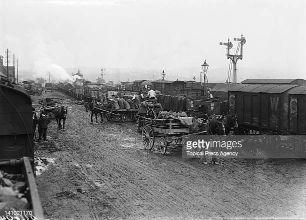 Apple carts and goods trains of the Great Western Railway in the pound at Henley and Sons cider works Newton Abbot Devon October 1908